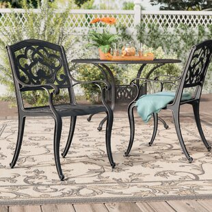 Agawam Patio Dining Chair (Set of 2)