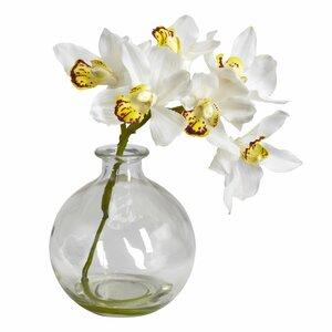 Cymbidium in Vase (Set of 3)