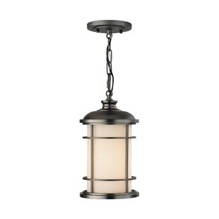 Georgia 1-Light Outdoor Pendant