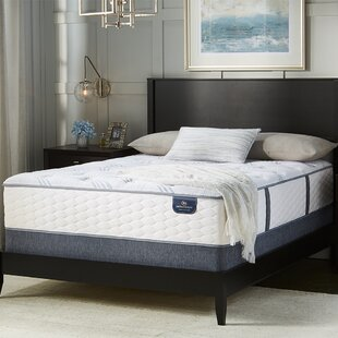Compare & Buy Perfect Sleeper 13 Plush Innerspring Mattress and Box Spring By Serta