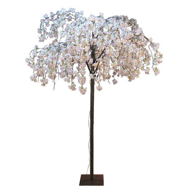 Cherry Blossom Tree Wayfair Ca
