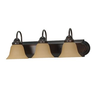 Gurney 3-Light Traditional Vanity Light by Three Posts