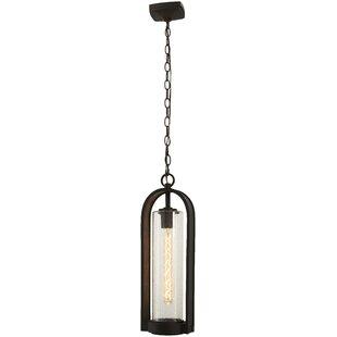 Gracie Oaks Mauldin 1-Light Outdoor Hanging Lantern
