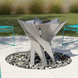 Redfield Stainless Steel Charcoal/Wood Burning Fire Pit By Sol 72 Outdoor