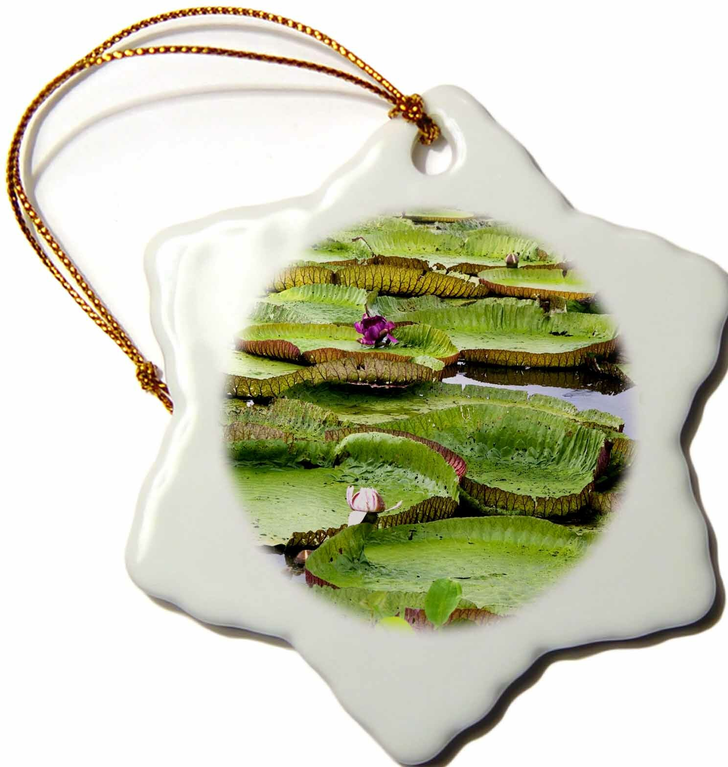 The Holiday Aisle Water Lily Flowers Amazon Manaus Brazil Snowflake Holiday Shaped Ornament Wayfair