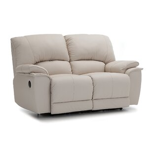 Dallin Reclining Loveseat by P..