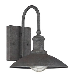 Birch Lane™ Romsey Outdoor Barn Light