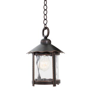 Winston 1-Light Outdoor Hanging Lantern