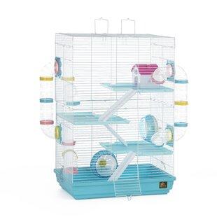 Hamster Cage Accessories   Wayfair