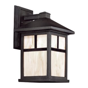 Reviews Donald 1-Light Outdoor Wall Lantern By Charlton Home