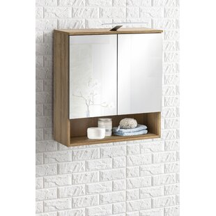 Dragon 65 X 79cm Mirrored Wall Mounted Cabinet By Fairmont Park