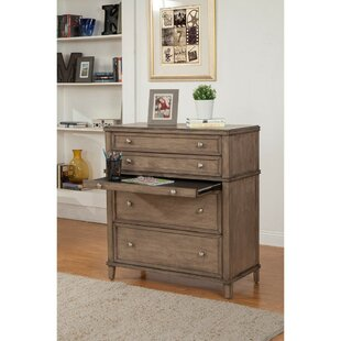 Gilbertson Multifunctional 4 Drawer Chest