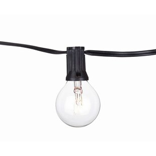 Guide to buy Global 14 Light Globe String Light By Aspen Brands