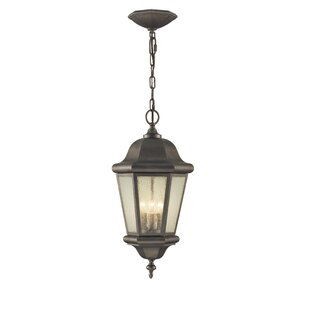 Darby Home Co Hereford 3-Light Outdoor Hanging Lantern