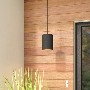 Asine 1-Light Outdoor Pendant