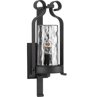 Buy clear Vanfleet Wall Lantern By Red Barrel Studio