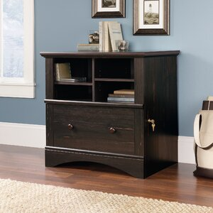 Pinellas 1 Drawer File Cabinet
