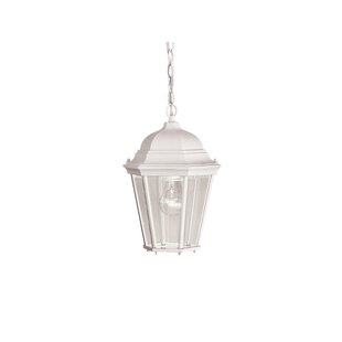 Astoria Grand Allmon 1-Light Outdoor Hanging Lantern