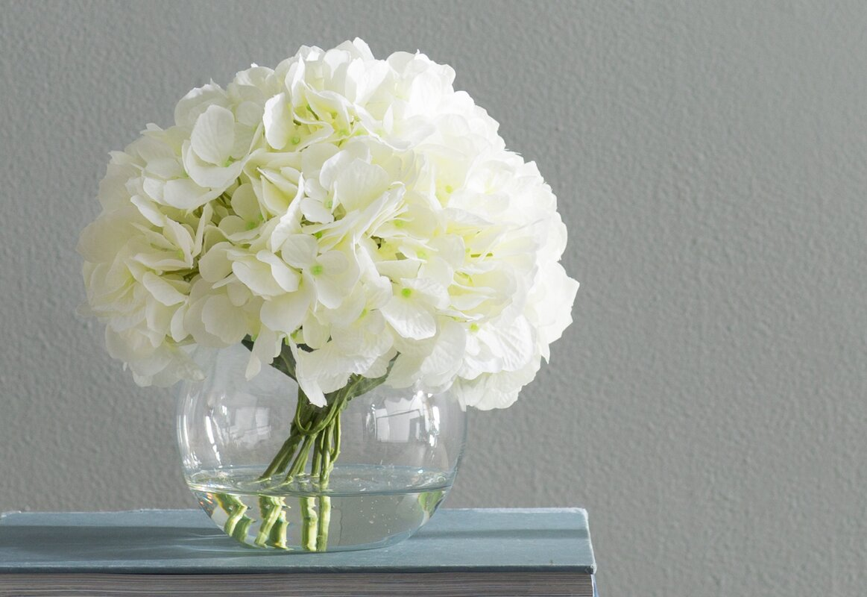 White hydrangea floral arrangements reviews joss main white hydrangea floral arrangements mightylinksfo