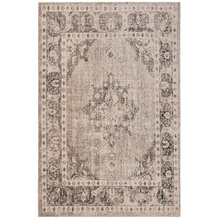 Griffeth Gray/Ivory Indoor/Outdoor Area Rug