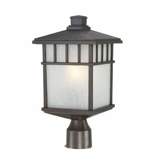 Bloomsbury Market Teminot Outdoor 1-Light Glass Lantern Head