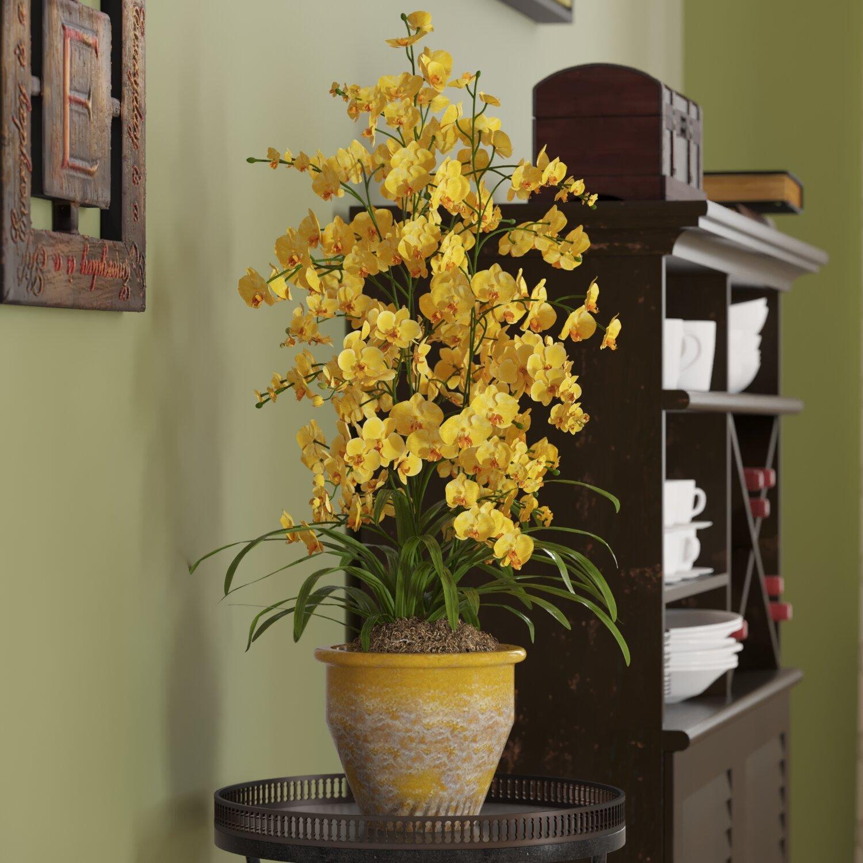 Three posts triple dancing lady silk orchid flowers in yellow three posts triple dancing lady silk orchid flowers in yellow reviews wayfair mightylinksfo