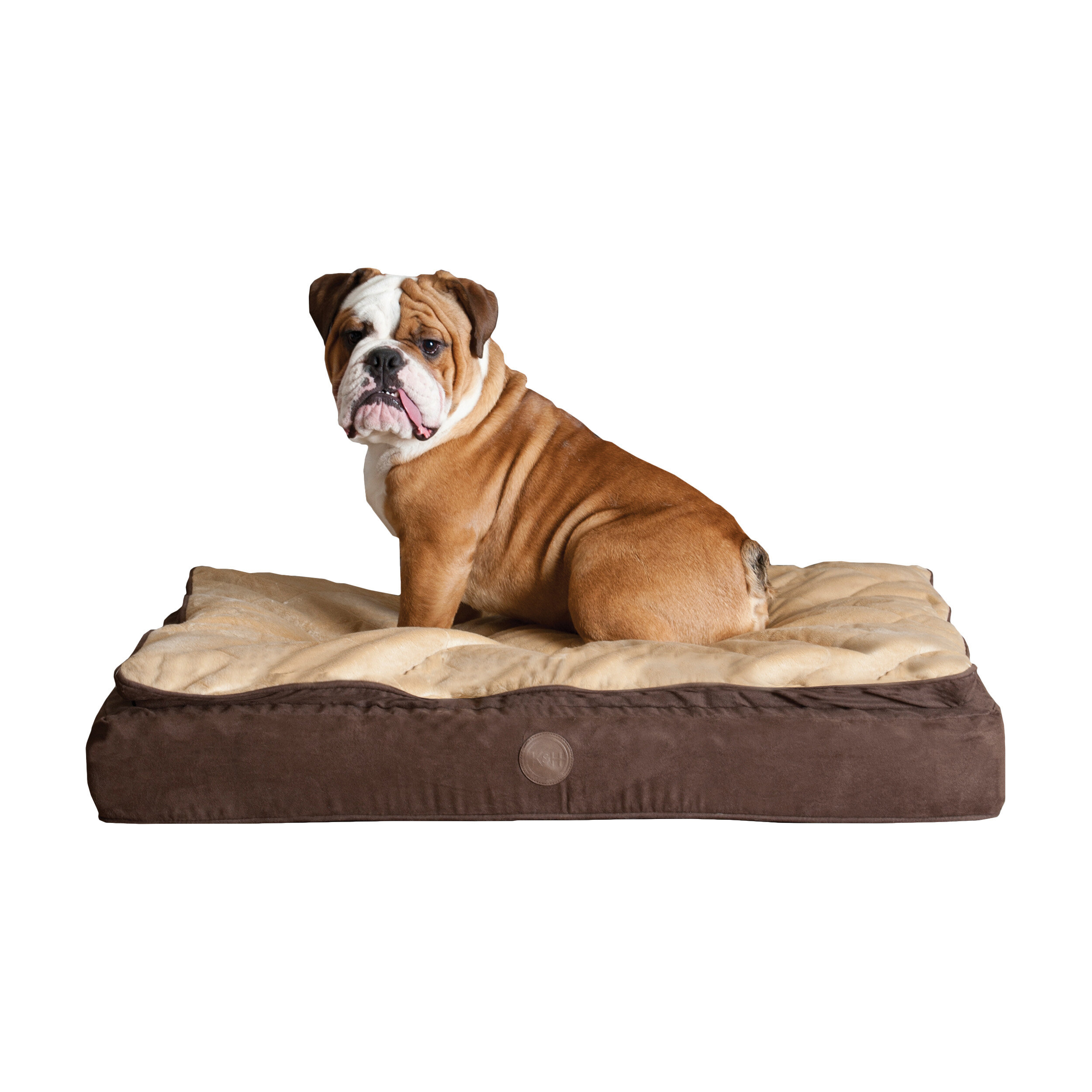 dog heated southbaynorton home beds fancy bed small of types interior