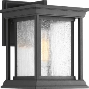Darby Home Co Samanda 1-Light Outdoor Wall Lantern