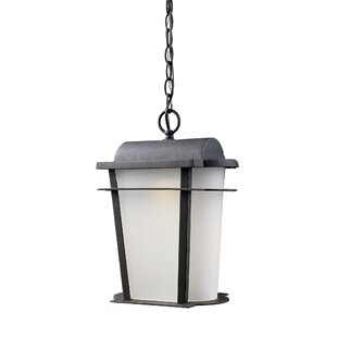 Gracie Oaks Marko 1-Light Outdoor Hanging Lantern