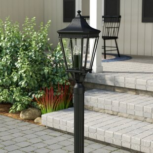 Buy luxury Chesterhill 1-Light LED Lantern Head By Darby Home Co
