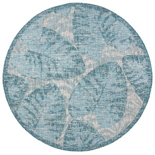 Shani Gray/Aqua Indoor/Outdoor Area Rug
