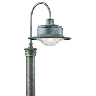 Theodore 1-Light 75W Lantern Head by Darby Home Co