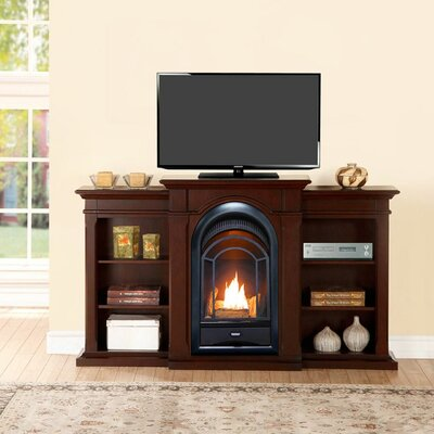 Heating Vent Free Propane/Natural Gas Fireplace ProCom