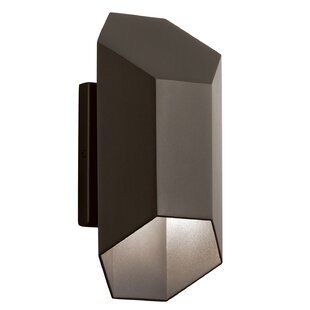 Cyrano 1-Light Outdoor Sconce