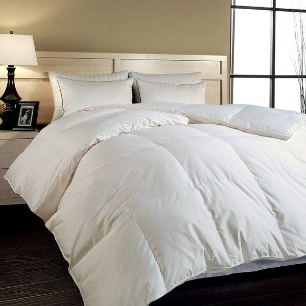 Alwyn Home All Season Down Alternative Comforter & Reviews | Wayfair