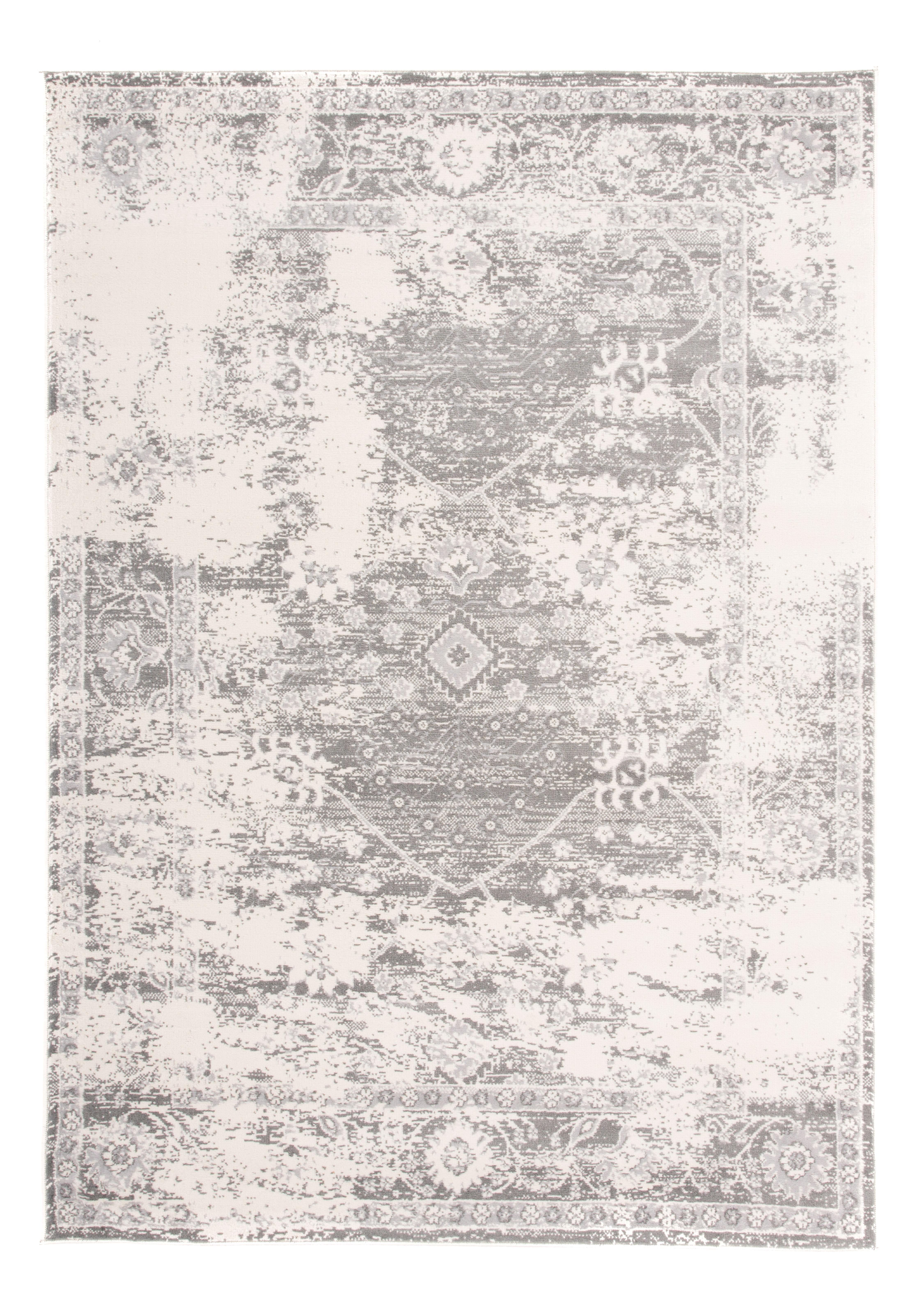Vedika Oriental Gray Silver Area Rug
