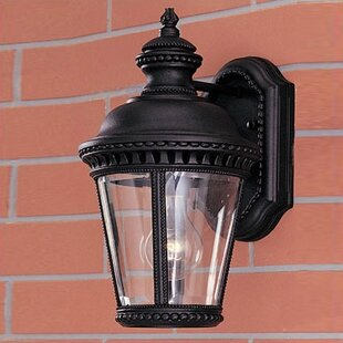 Llewellyn 1-Light Outdoor Wall Lantern