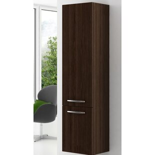 Trejo 150 X 35cm Wall Mounted Tall Bathroom Cabinet By Ebern Designs