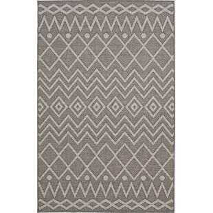 Sailer Haily Gray Indoor/Outdoor Area Rug