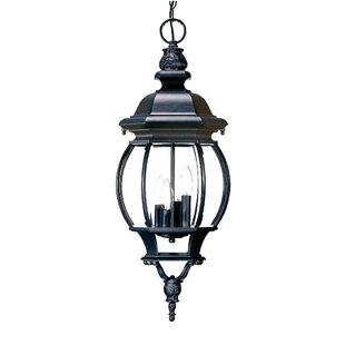 Reva 4-Light Outdoor Hanging Lantern