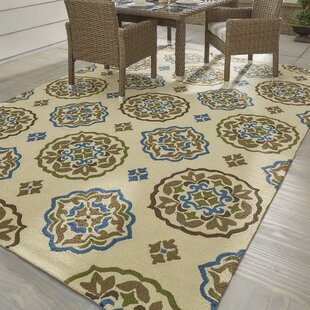 Union Hand-Hooked Cream/Blue Indoor/Outdoor Area Rug