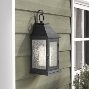 Hague 1-Light Outdoor Wall Lantern by Darby Home Co