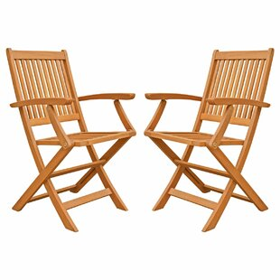 Three Posts Cadsden Folding Patio Dining Chair (Set of 2)
