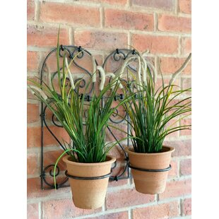 Mcgrady 2 Piece Metal Wall Planter Set By Sol 72 Outdoor