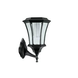 Ackerly LED Outdoor Wall Lantern