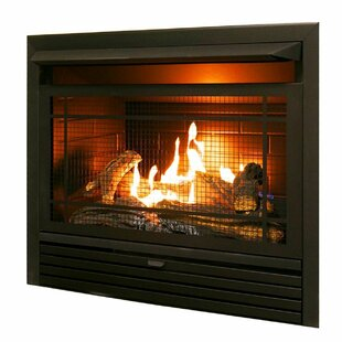 Gas Fireplace Inserts Logs You Ll Love In 2019 Wayfair