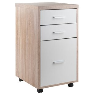 Midway 3-Drawer Mobile Vertical Filing Cabinet by Ebern Designs Bargain