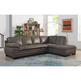 https://secure.img1-fg.wfcdn.com/im/36089991/resize-h310-w310%5Ecompr-r85/4303/43031546/nick-leather-sectional-with-ottoman.jpg
