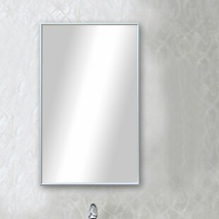 Where buy  Polished Silver Floor Mirror By Darby Home Co
