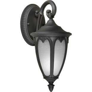 Charlton Home Donna 1-Light Outdoor Wall Lantern